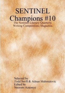 sentinel champions 10 cover